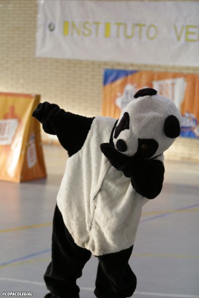 El Oso Panda, mascota de Veritas